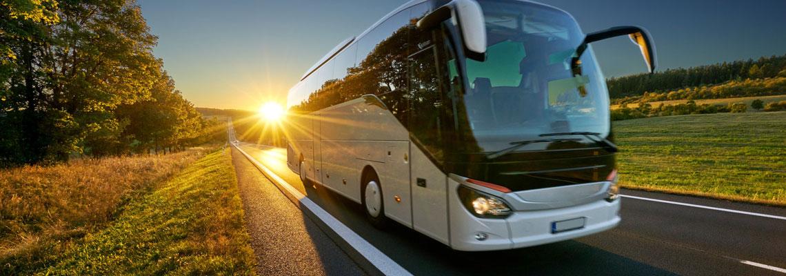 Louer un bus avec chauffeur en contactant une entreprise spécialisée en ligne